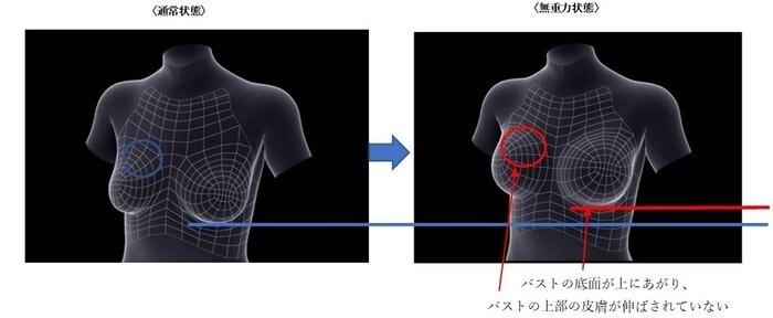 通常状態と無重力状態の図.jpg
